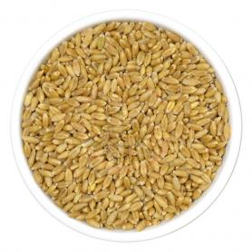 Burhan Fine Wheat Flour 1Kg